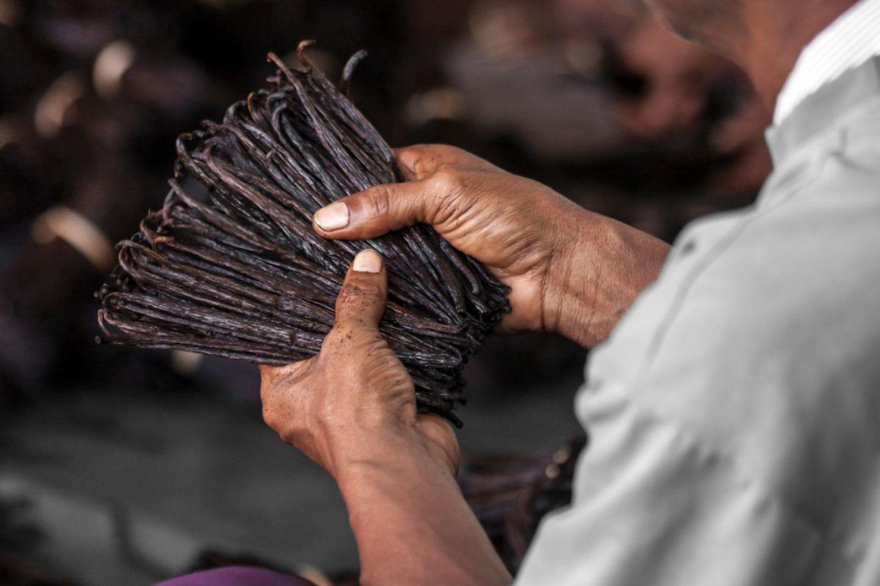 Extract Pur de Vanilie Bourbon din Madagascar